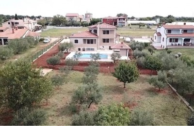 Spacious house with swimming pool and 3 APP in Novigrad